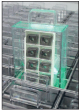 Single Box Dispenser II